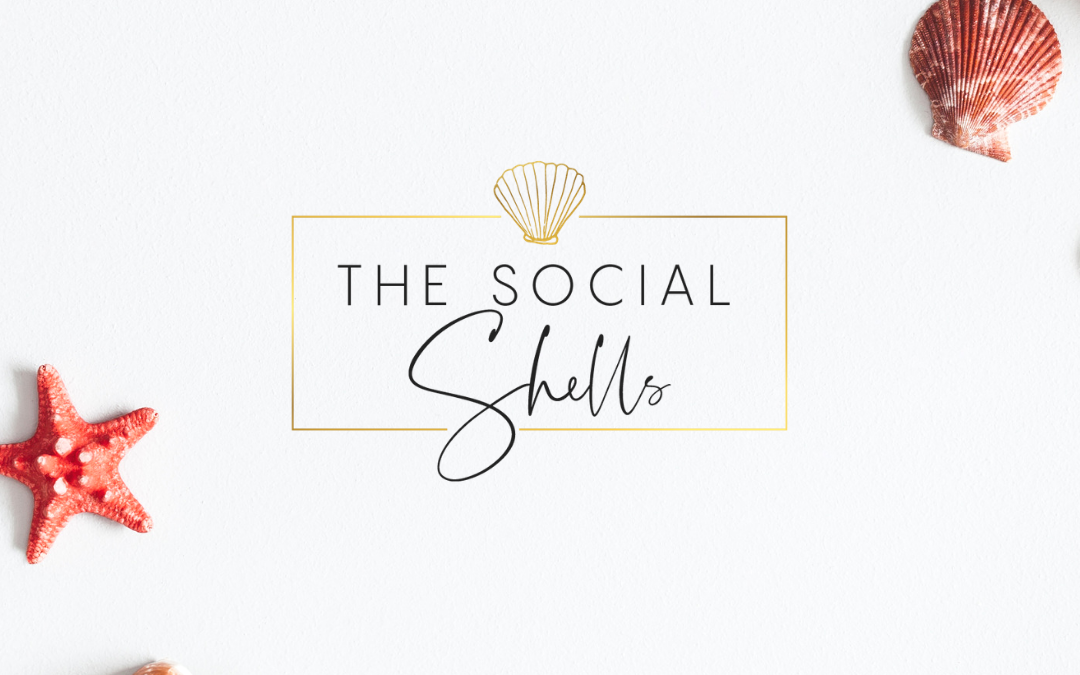 Branding and Website Design for The Social Shells